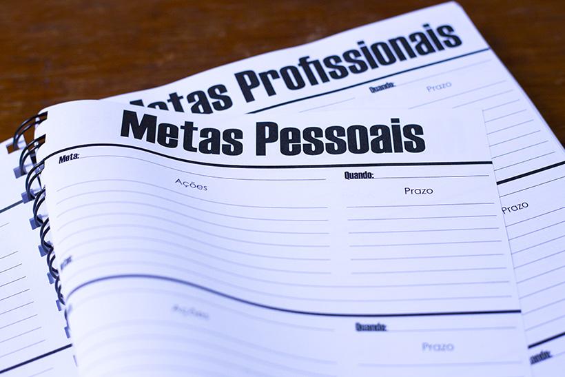 Metas pessoais e profissionais - Modelo de Planner | STYLING TIP 2018